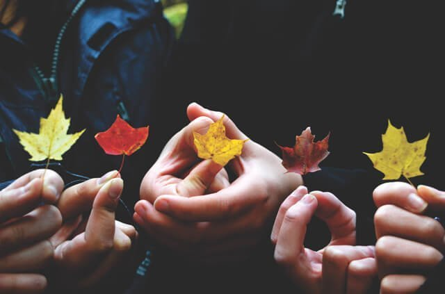 Photo of a group holding leaves